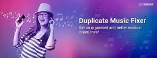 Portable Duplicate Music Fixer 2.1.1000.11048