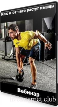 Как и от чего растут мышцы (2021) Вебинар