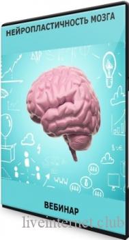 Александр Клинг - Нейропластичность мозга (2021) Вебинар